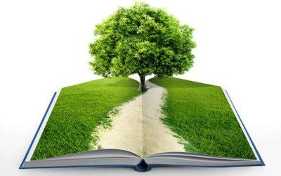 Talleres Educación Ambiental