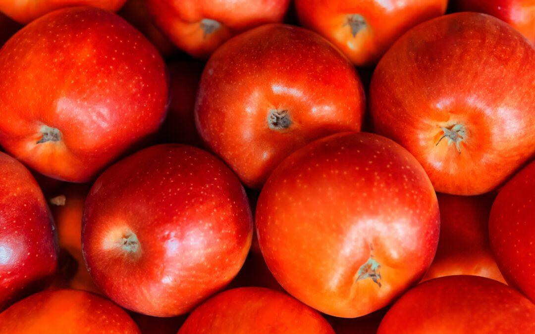 Programa Escolar de Fruta y Leche